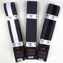 Fuji Children's IBJJF Belts